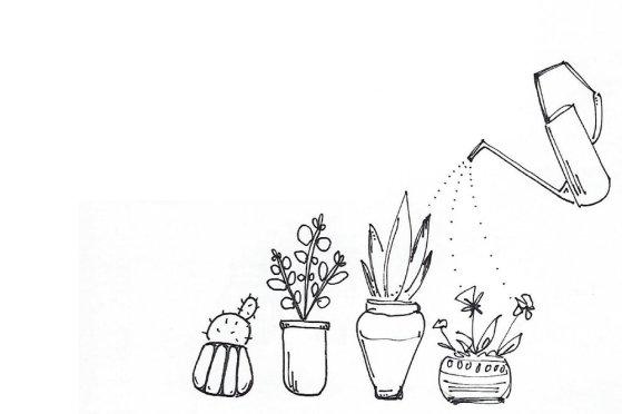 plantsketch-01.jpg